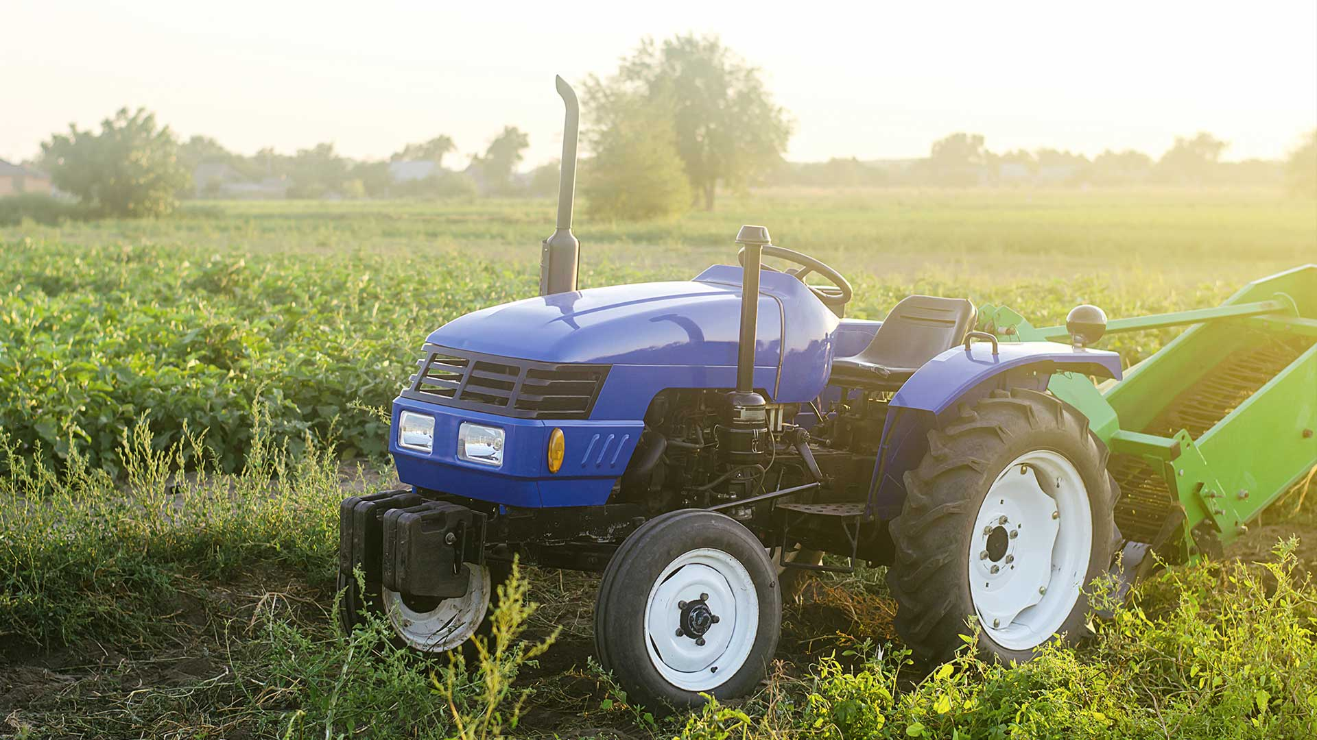 A farm blue tractor stands on the field. The use of machines in agriculture increases the speed and efficiency of work. Farming and farmland. Harvesting potatoes in autumn. Countryside.